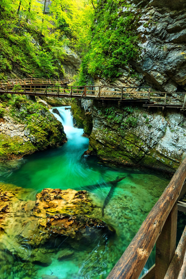Luxurious Active holidays in Slovenia