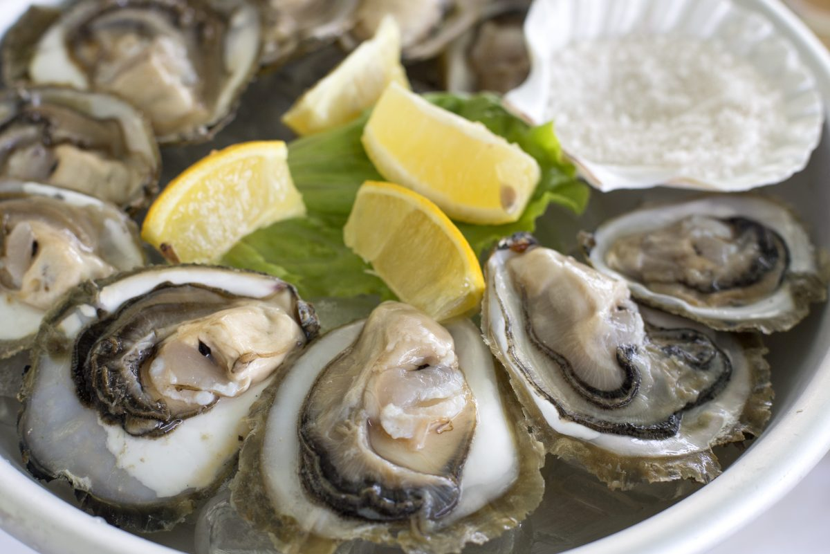 Gastronomy trip to Croatia, oysters