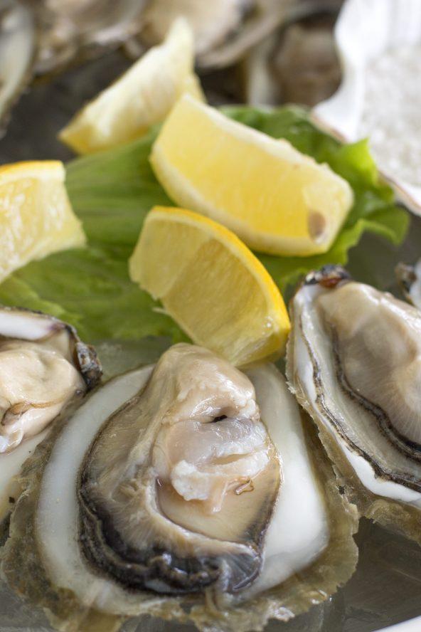 Gastronomy trip to Croatia, oysters