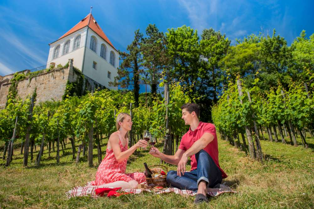 Wine tasting in Slovenia