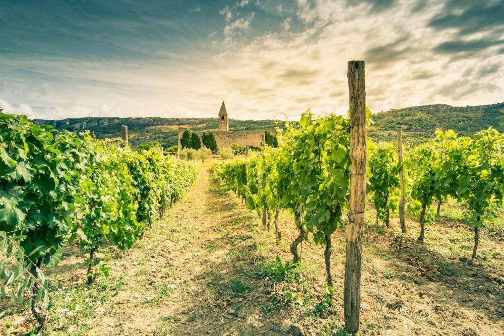 Slovenian wine tour - Hrastovlje