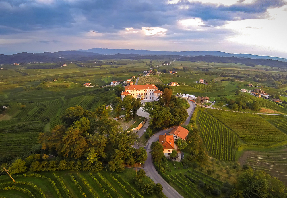 Get married at Vila Vipovze